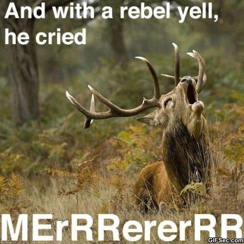 rebel-yell
