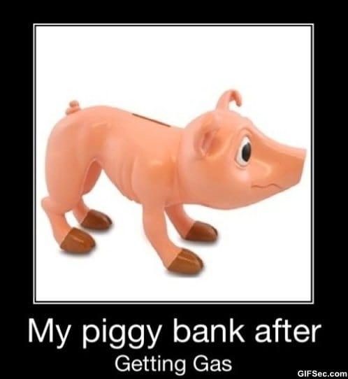 the-piggy-bank