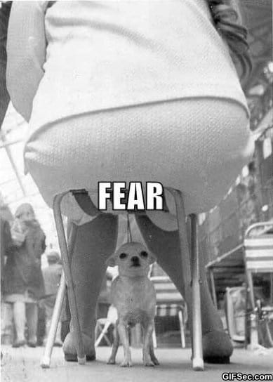 the-face-of-fear