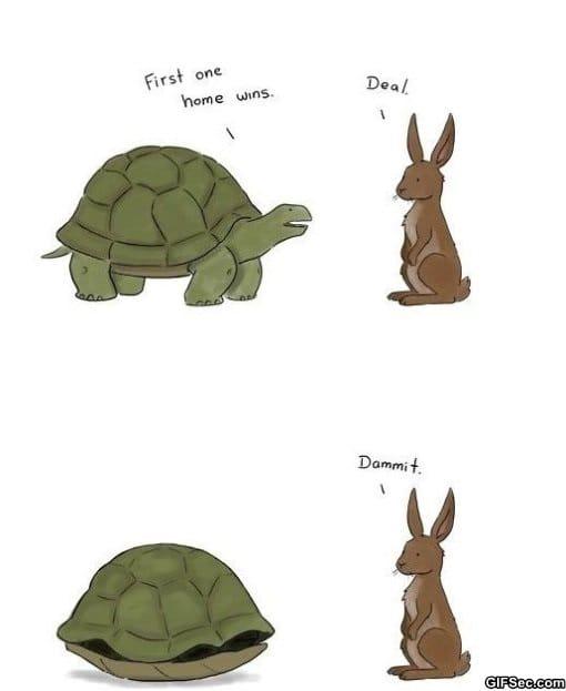 troll-turtle