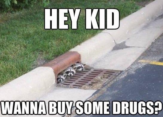 Funny Meme Pictures 2014 : Funny hey kid meme jokes