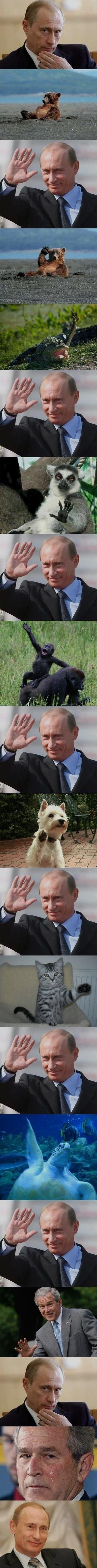 Putin  Highfive