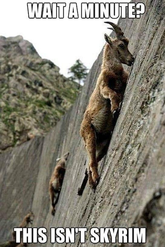 Skyrim Goats