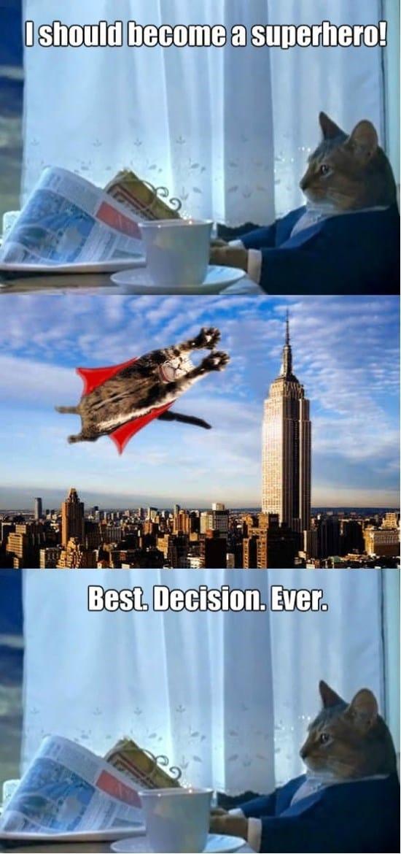 supercat-funny-meme-gif