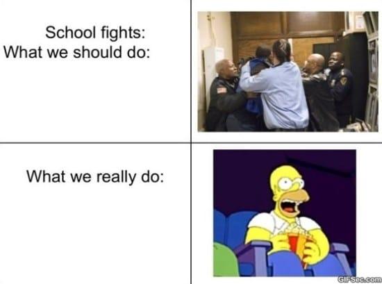 School fights MEME