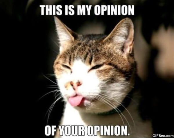 opinion MEME opinion meme viral viral videos