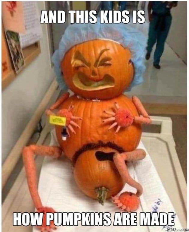 where-do-pumpkins-come-from-meme