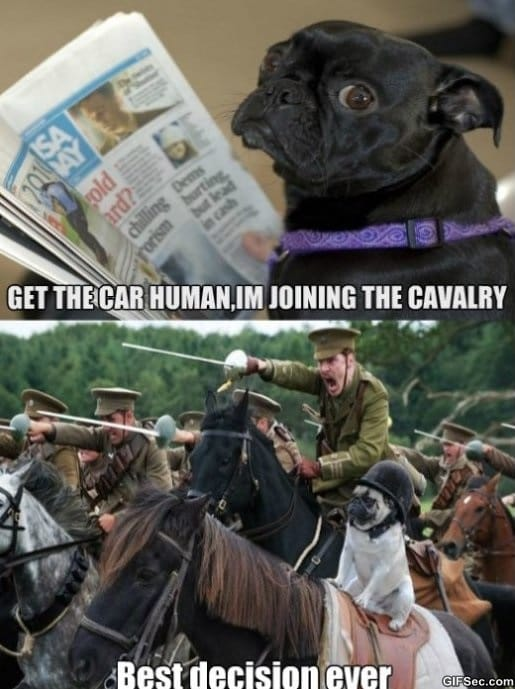 The Cavalry MEME
