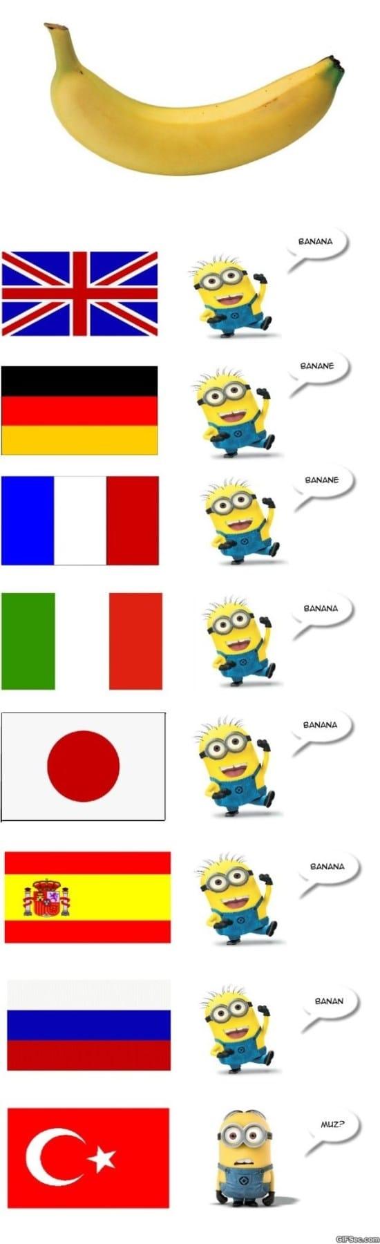 banana-meme