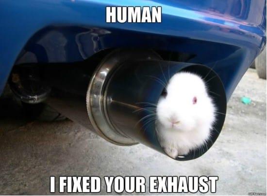 engineer-rabbit-meme