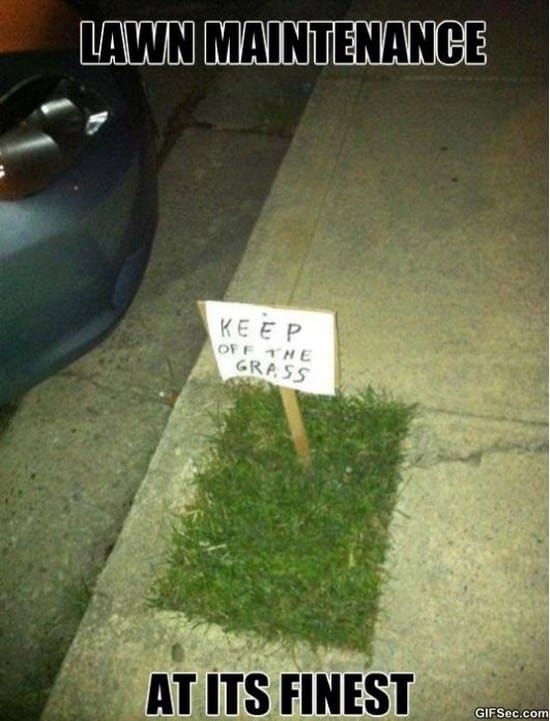 nice-lawn-meme