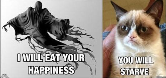 grumpy-cat-1-meme-2015