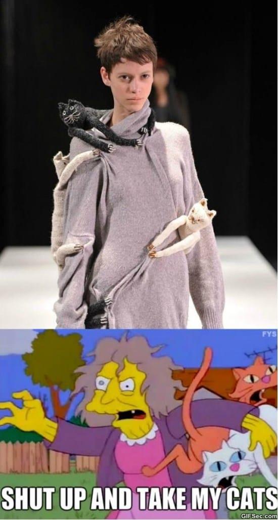 cat-lady-fashion-meme