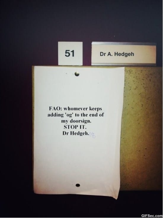 dr-hedgehog-meme