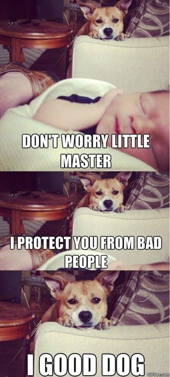 master-meme