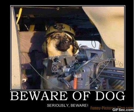 Beware Dog Funny