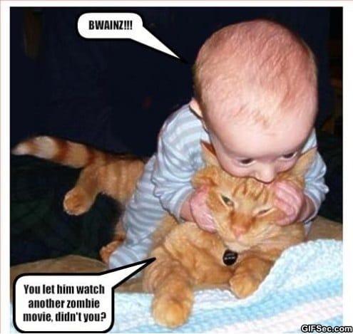 LOLcat - Ice Cream Zombie | Funny Cat Pictures