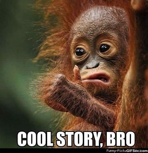 Cool_Story_Bro.jpg