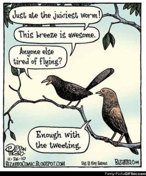 Twitter Memes Related Keywords - Twitter Memes Long Tail ...