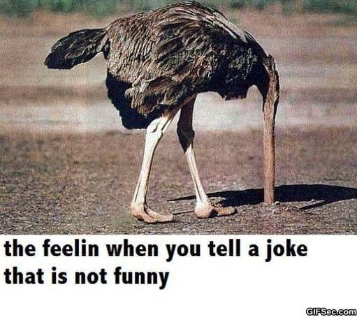 bad-jokes