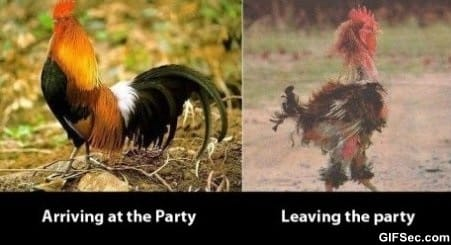 before-and-after-the-party