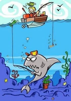 brilliant-shark