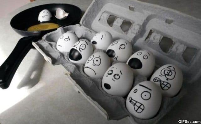 egg-faces
