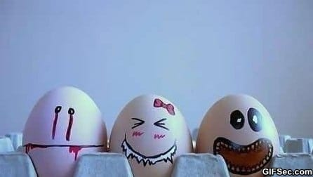 eggnorance
