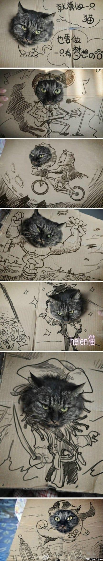 funniest-cat-ever