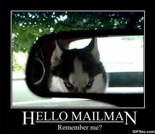 hello-mailman