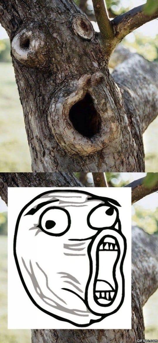 lol-tree