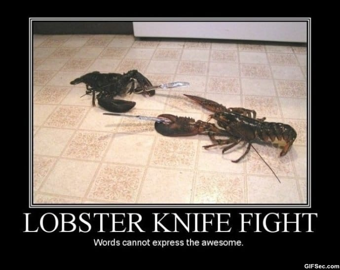lobster-knight-fight