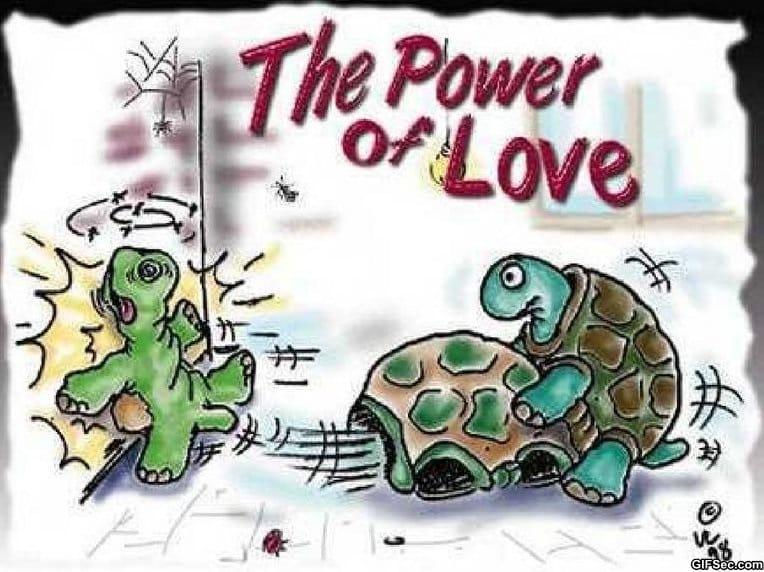 power-of-love