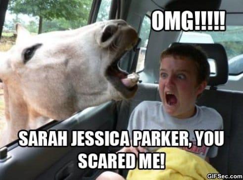 sarah-jessica-parker-meme