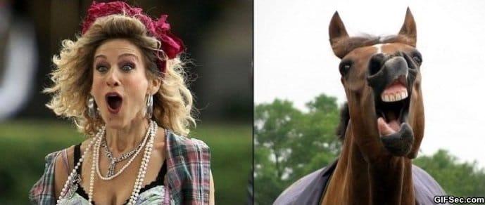 sarah-jessica-parker-vs-horse