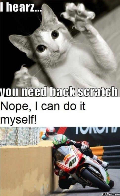 scratching-back-like-a-boss
