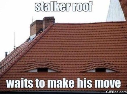 stalkers-everywhere