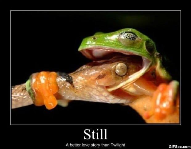 still-better-love-story-than-twilight
