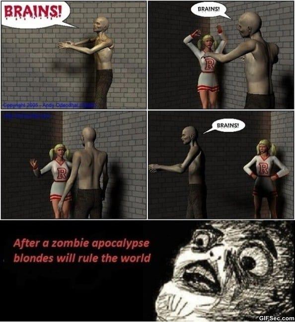 Zombie Apocalypse Meme Funny : Comments