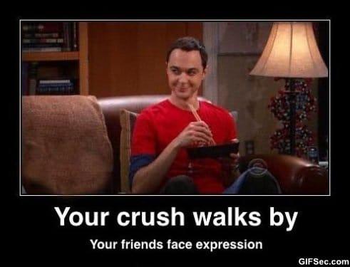 Sheldon MEME
