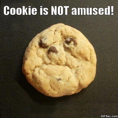 [Image: Cookie-is-not-amused.jpg]