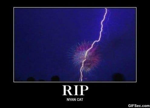 RIP Nyan Cat