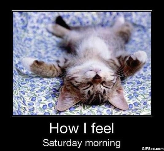 Good Morning Saturday With Quotes : Happy saturday quotes funny quotesgram