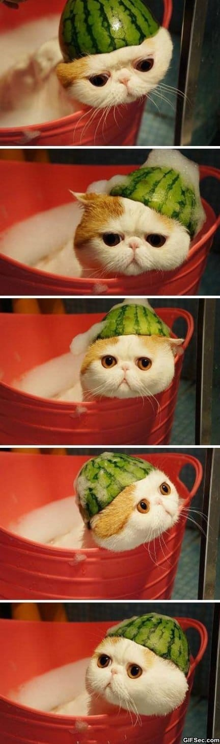 Melonhead taking a bath