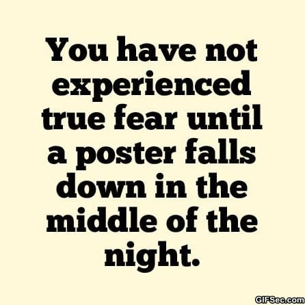 funny-pictures-true-fear