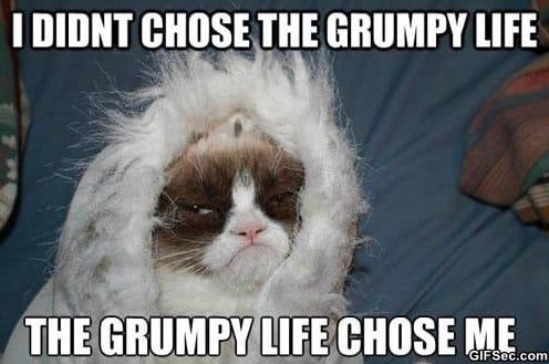LOL - Grumpy life