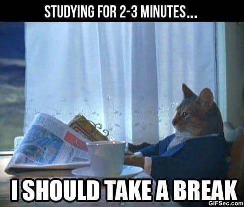 lol-studying