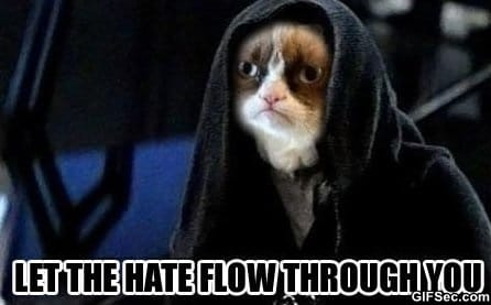 MEME - Grumpy cat