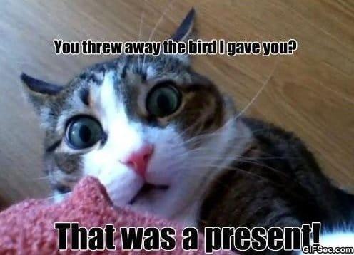 MEME - The Present