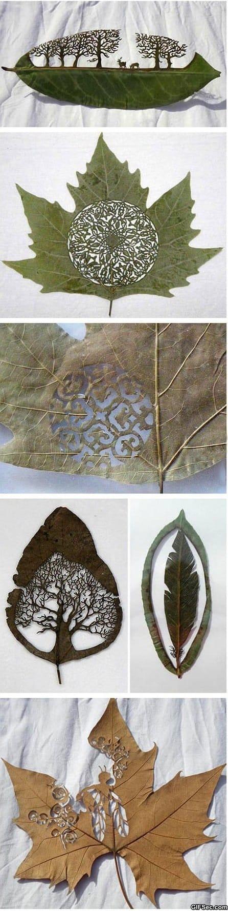 art-in-a-leaf